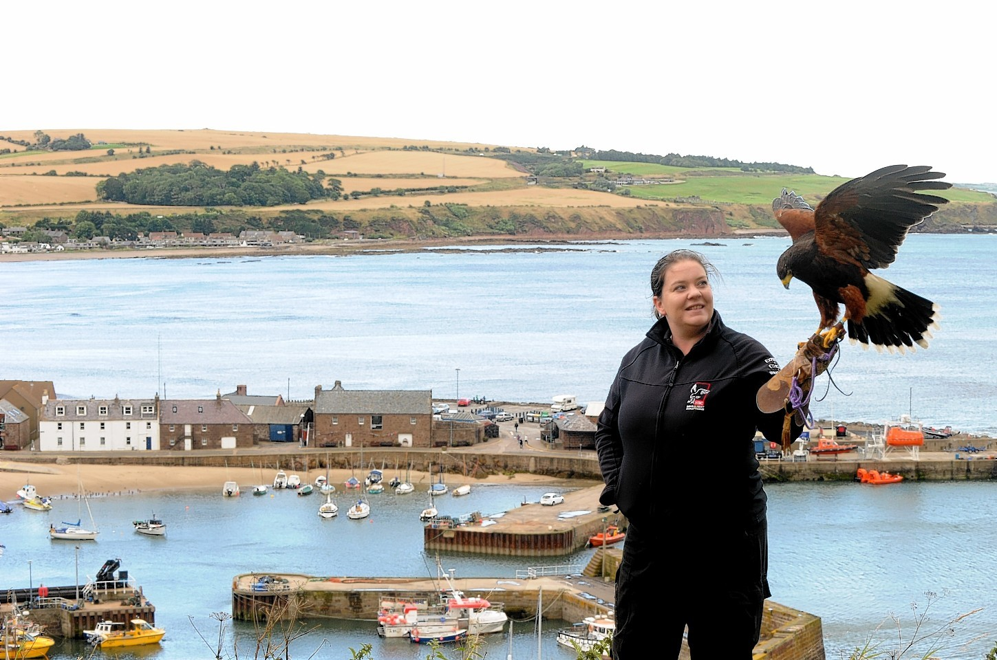 Harris Hawk Sky and handler Kirsty Imlay will patrol Stonehaven to scare off gulls