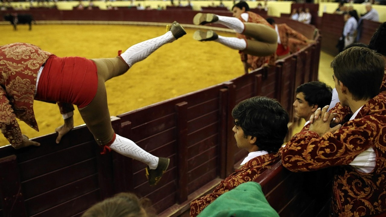 Portuguese forcados of the group of Alcochete, right, look at forcados of the group of Sao Mancos jumping into the bullring during a Portuguese-style bullfight in Campo Pequeno bullring, in Lisbon, Thursday, Aug. 21, 2014.