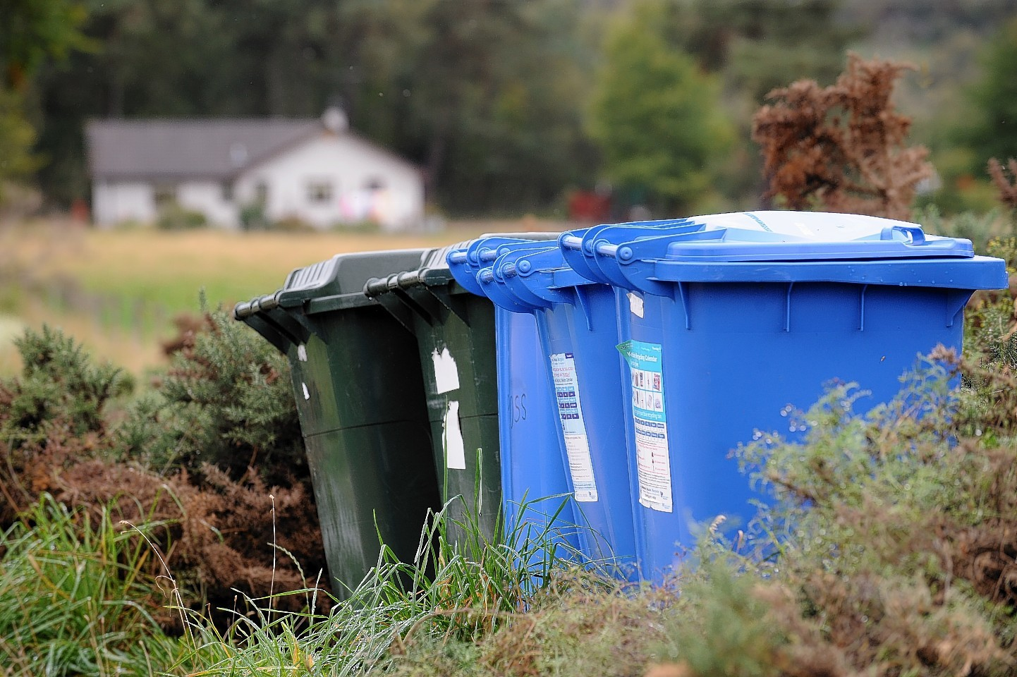 Councillors marvelled at wheelie bins similar to those pictured.