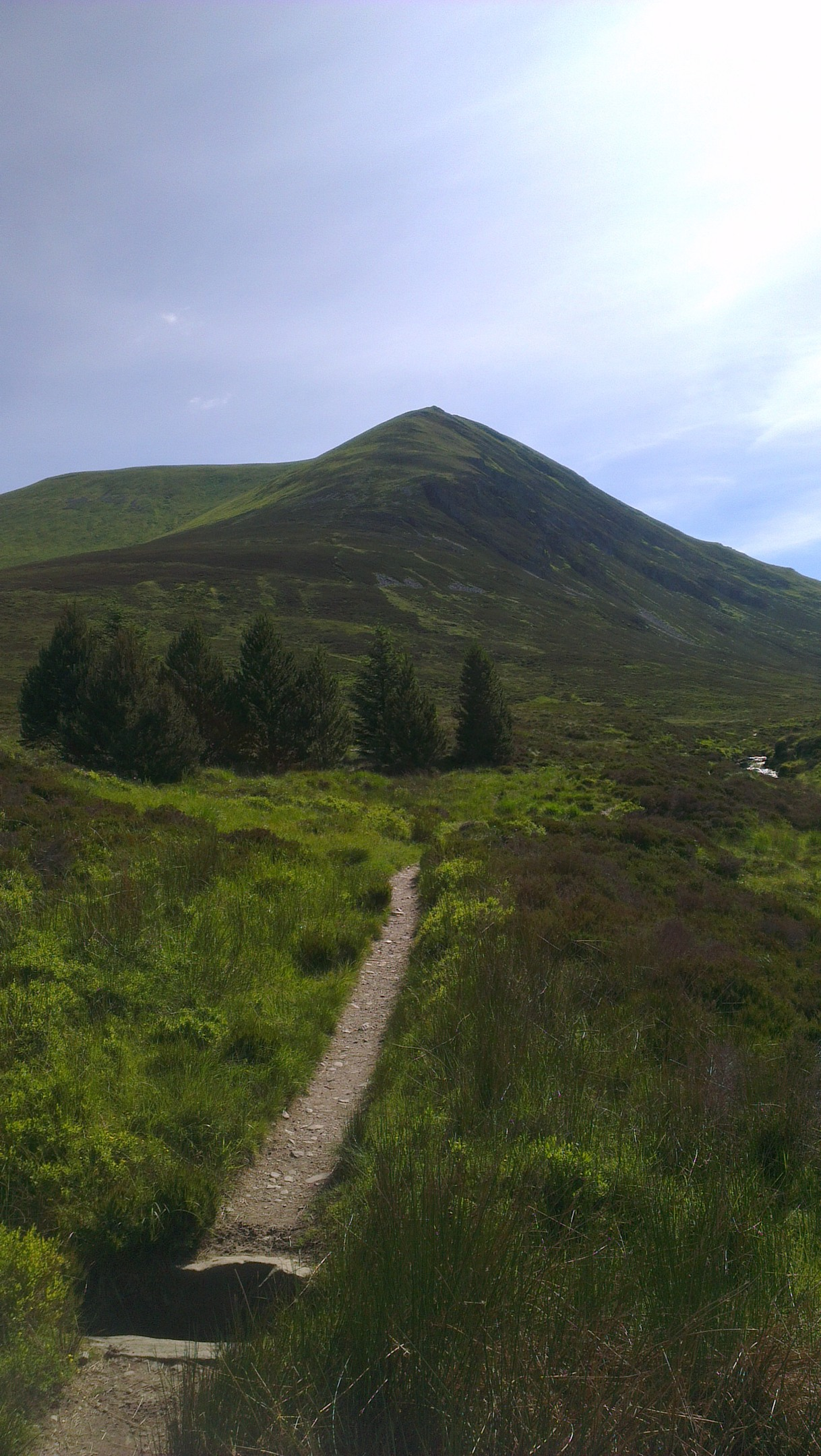 The busy An Caber route to the summit of Ben Wyvis