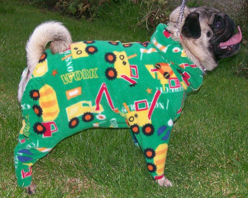 George 2 - dogs in onesies