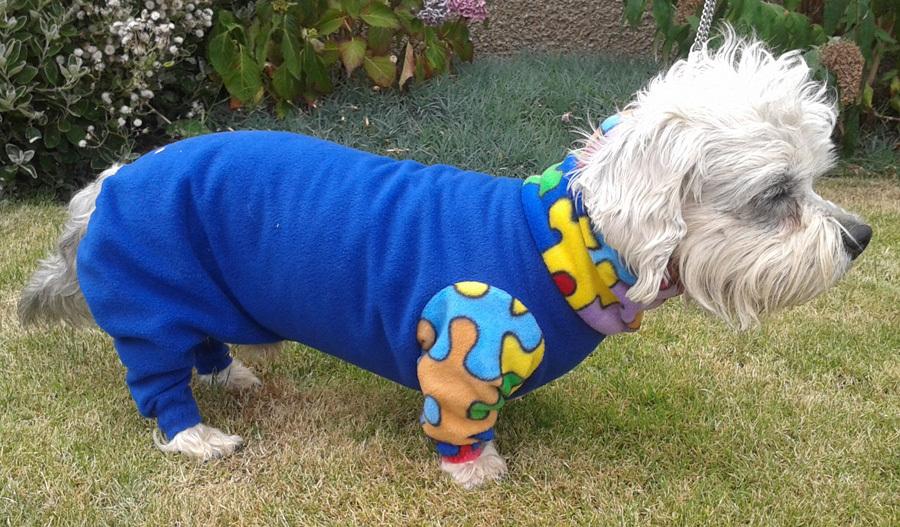 Hamish-3 - dogs in onesies
