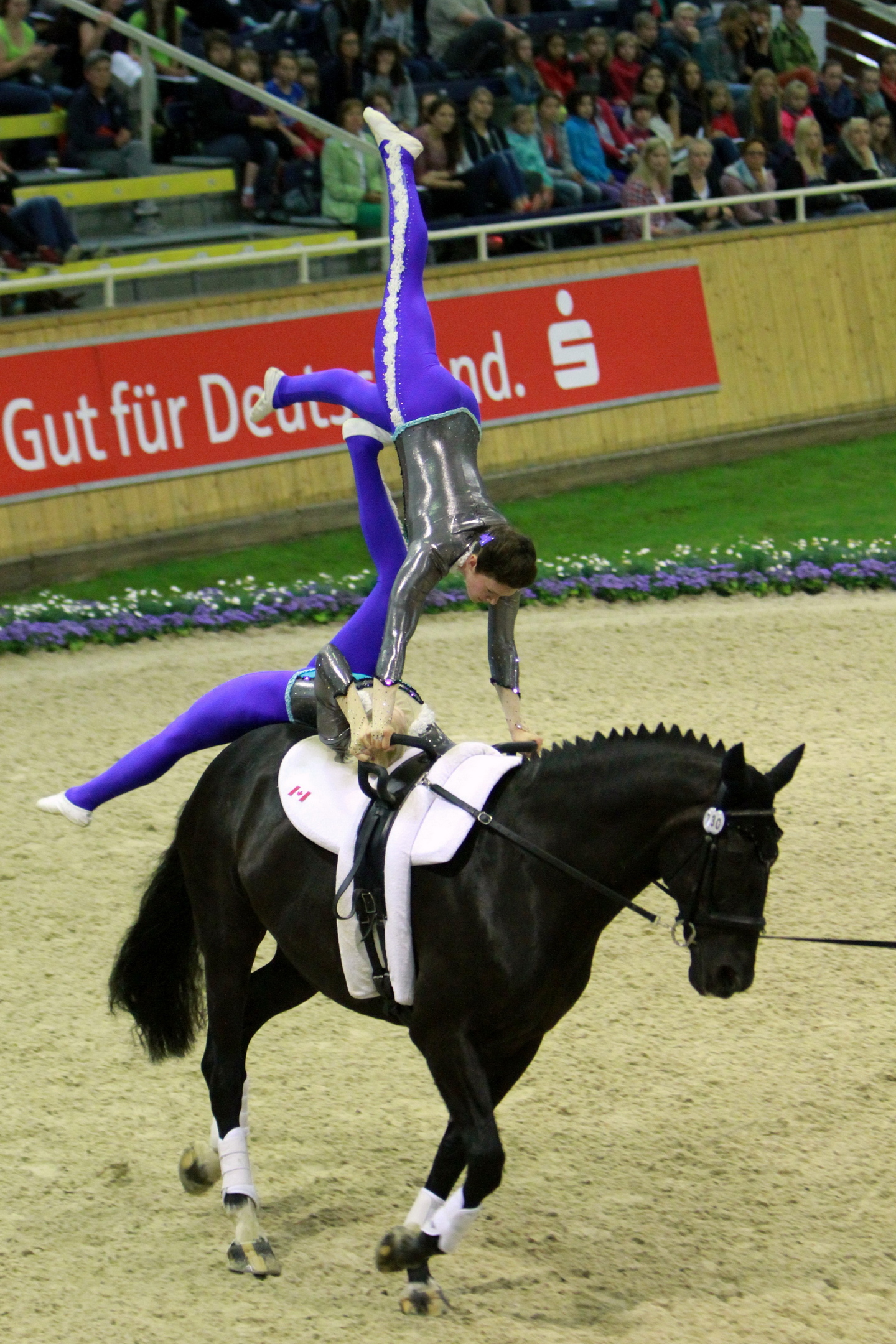 Islay in action in Aachen, Germany earlier this year