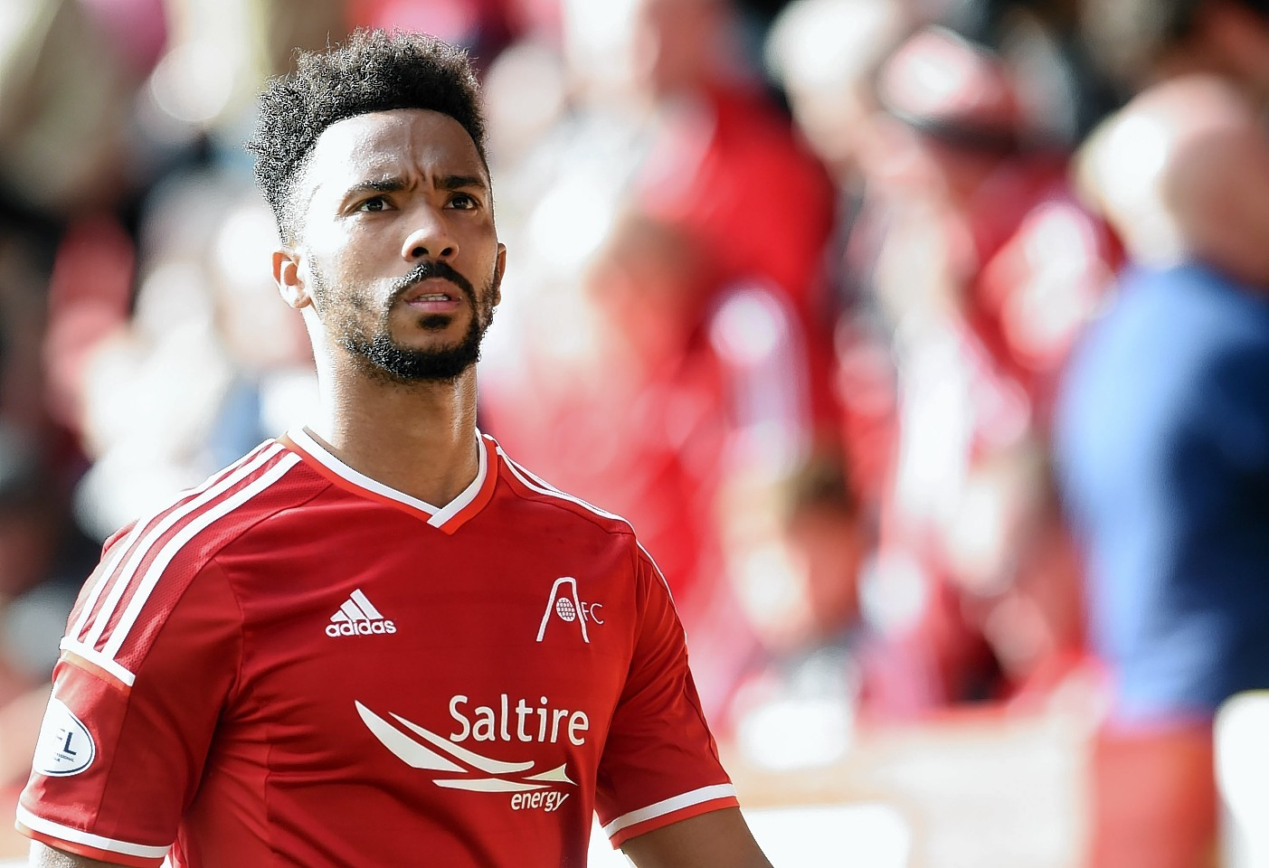 Shay Logan has enjoyed an action packed 12 months since joining the Dons