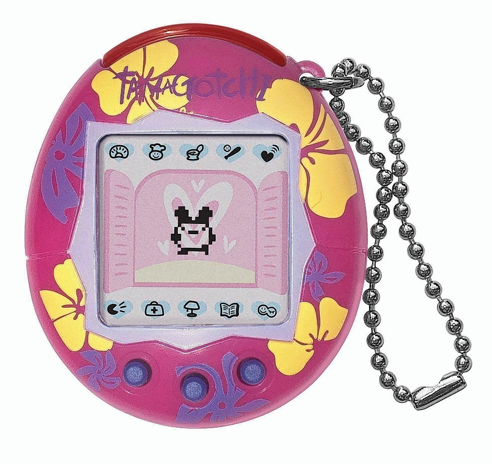 It was crucial to preserve the life of your tamagotchi