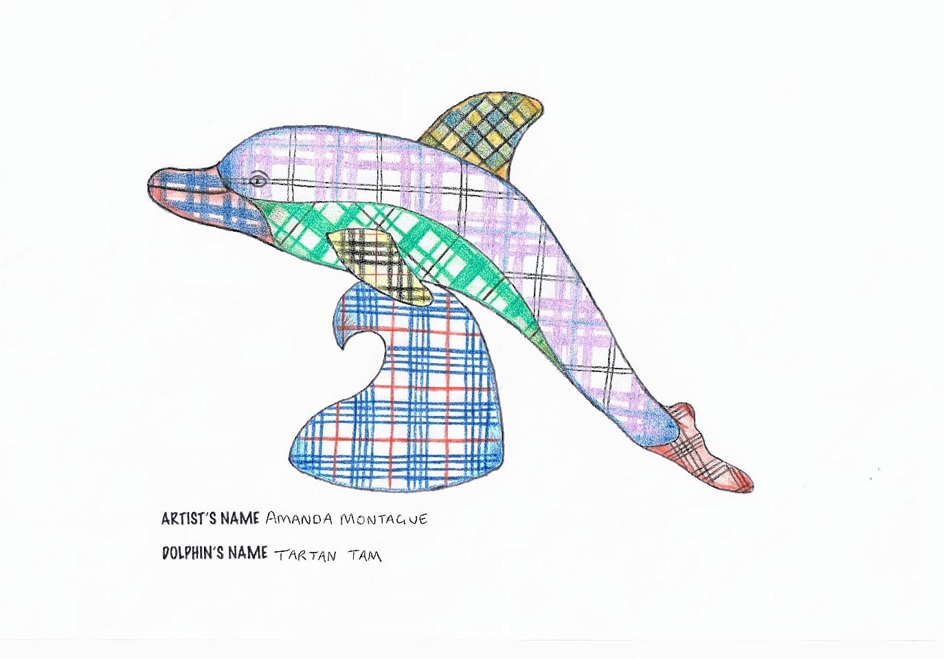 The winning dolphin design