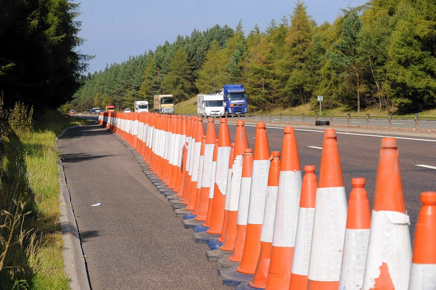 3,200 cones went missing in the last year