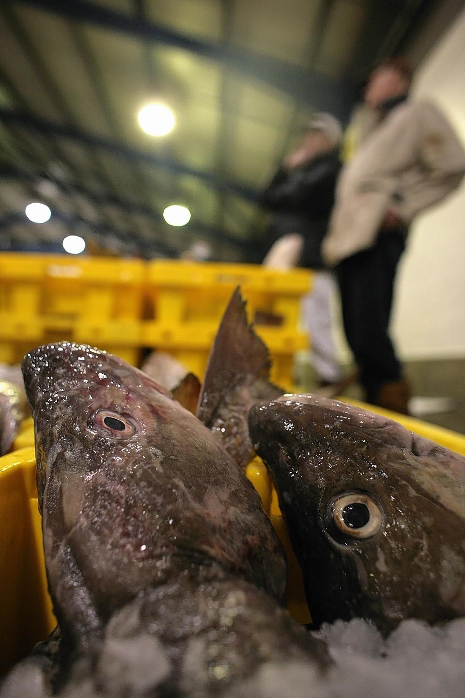 Worrying times for Scotland's fishing fleet