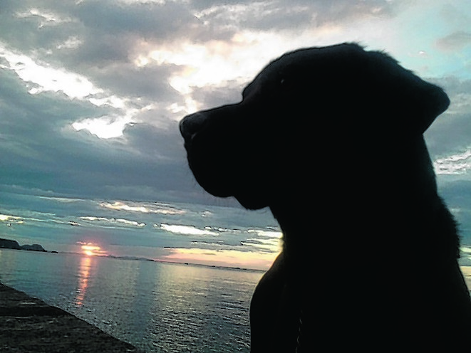 Mac watching the sun set in Cullen with owner Tracy Sellar of Cullen.