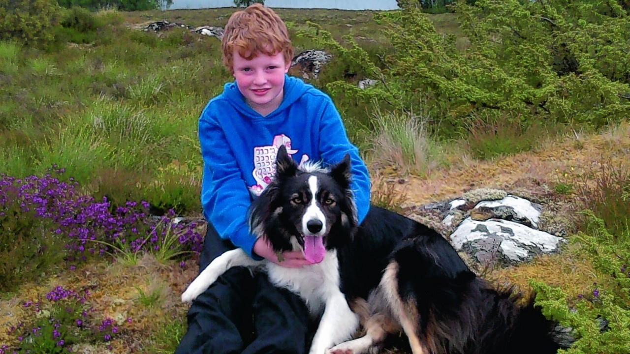 Here is John-Donald Mackintosh from Drumnadrochit with Finn, his good friend Malcolm Cooper's dog.  The picture is taken behind Culnabrae, Culnakirk, Drumnadrochit.