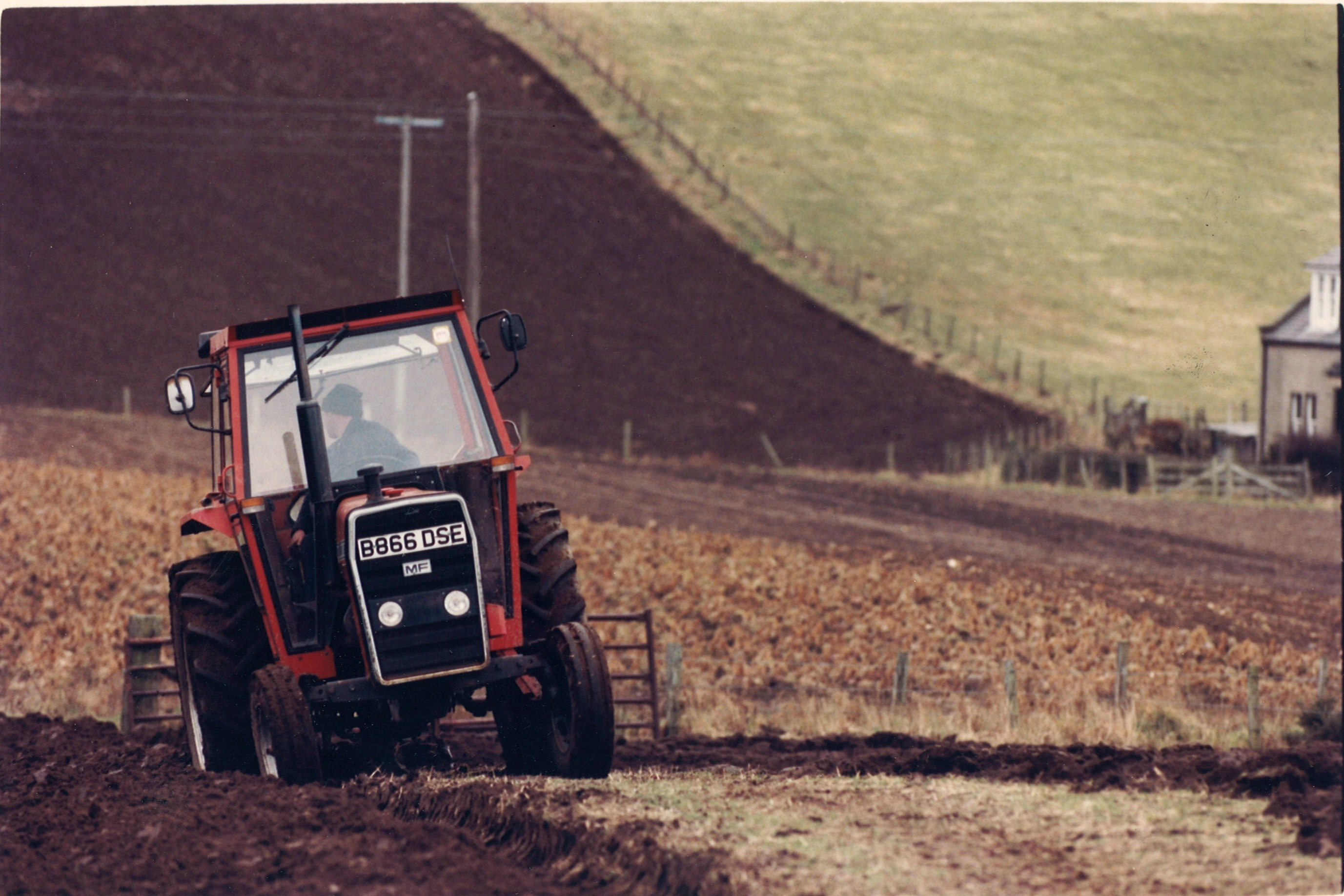 farming looking back 3