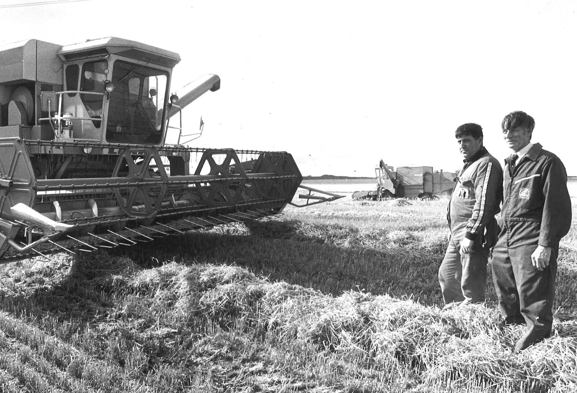farming looking back 4