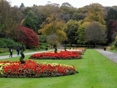 Aberdeen-in-bloom.jpg