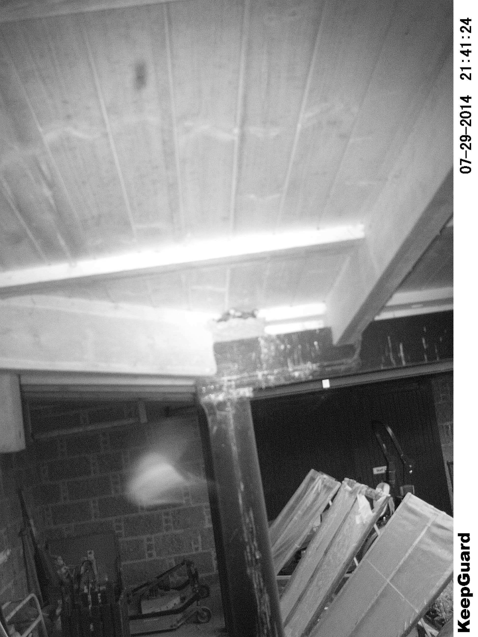 """Staff at Drum Castle believe they have captured a ghost on camera after finding a """"strange mist"""" in their photographs"""