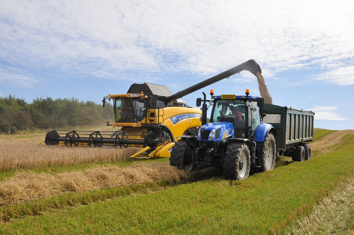 Farmers could find it more difficult to forward-sell grain