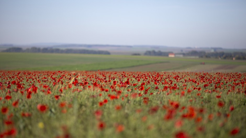 The play marks the centenary of the end of the First World War.