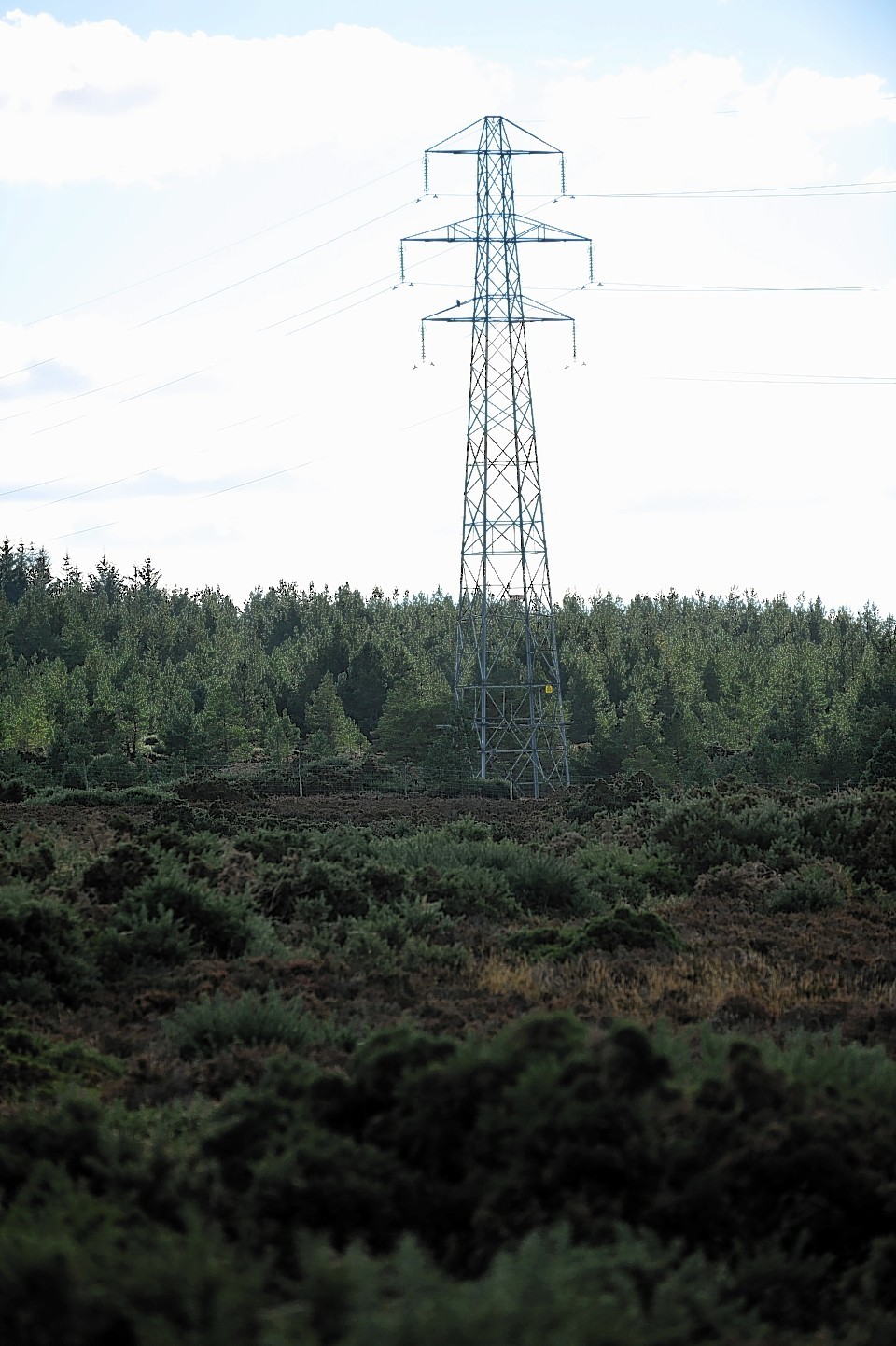 The planned site of the Carr Bann windfarm