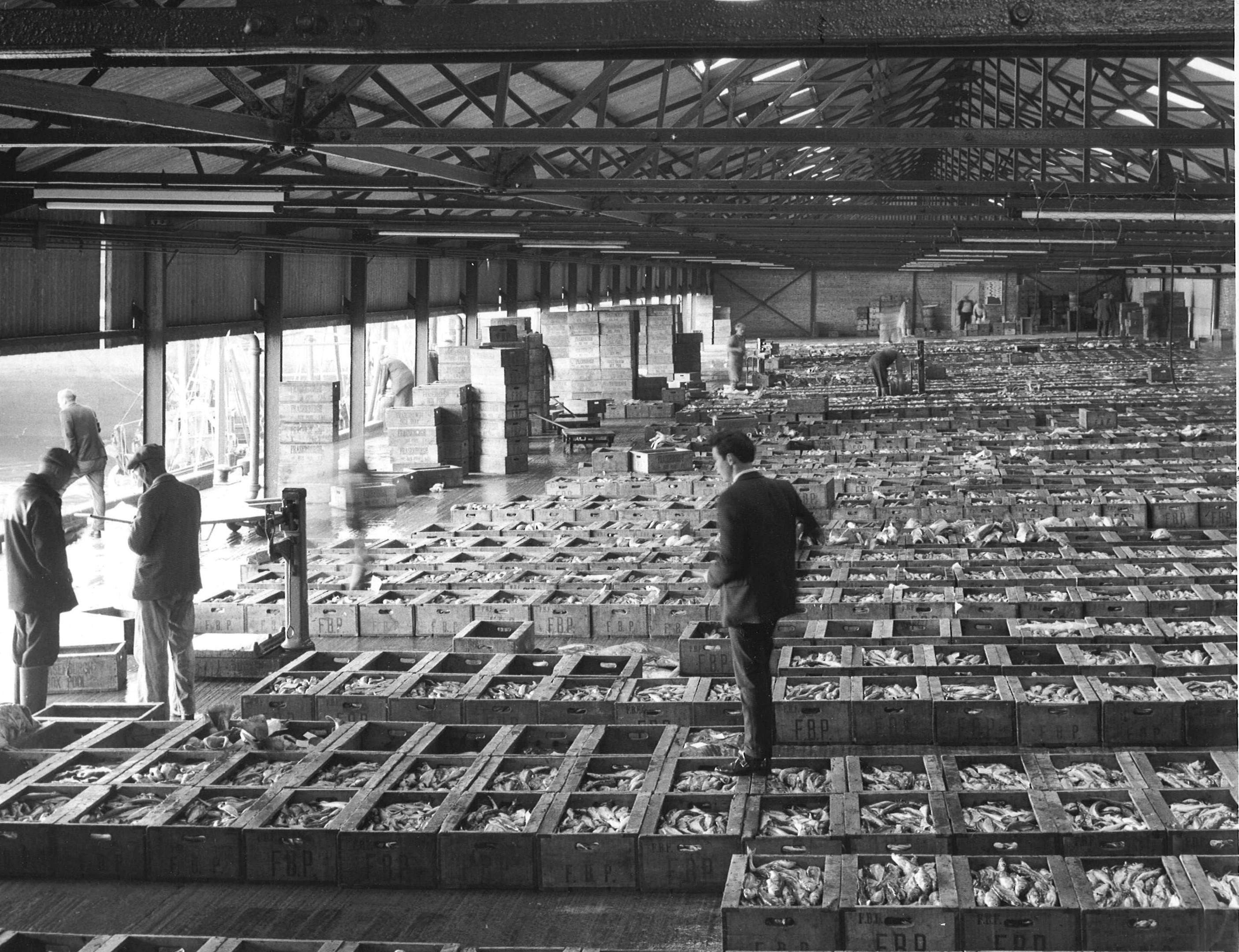 Fraserburgh fishmarket 5