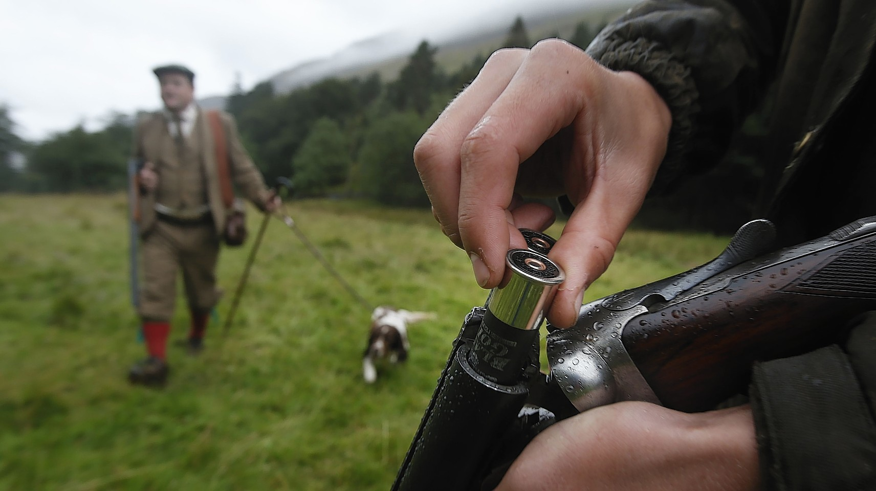 The Scottish Parliament is currently considering legislation which would reintroduce business rates for shooting and deer stalking properties and raise about £4million