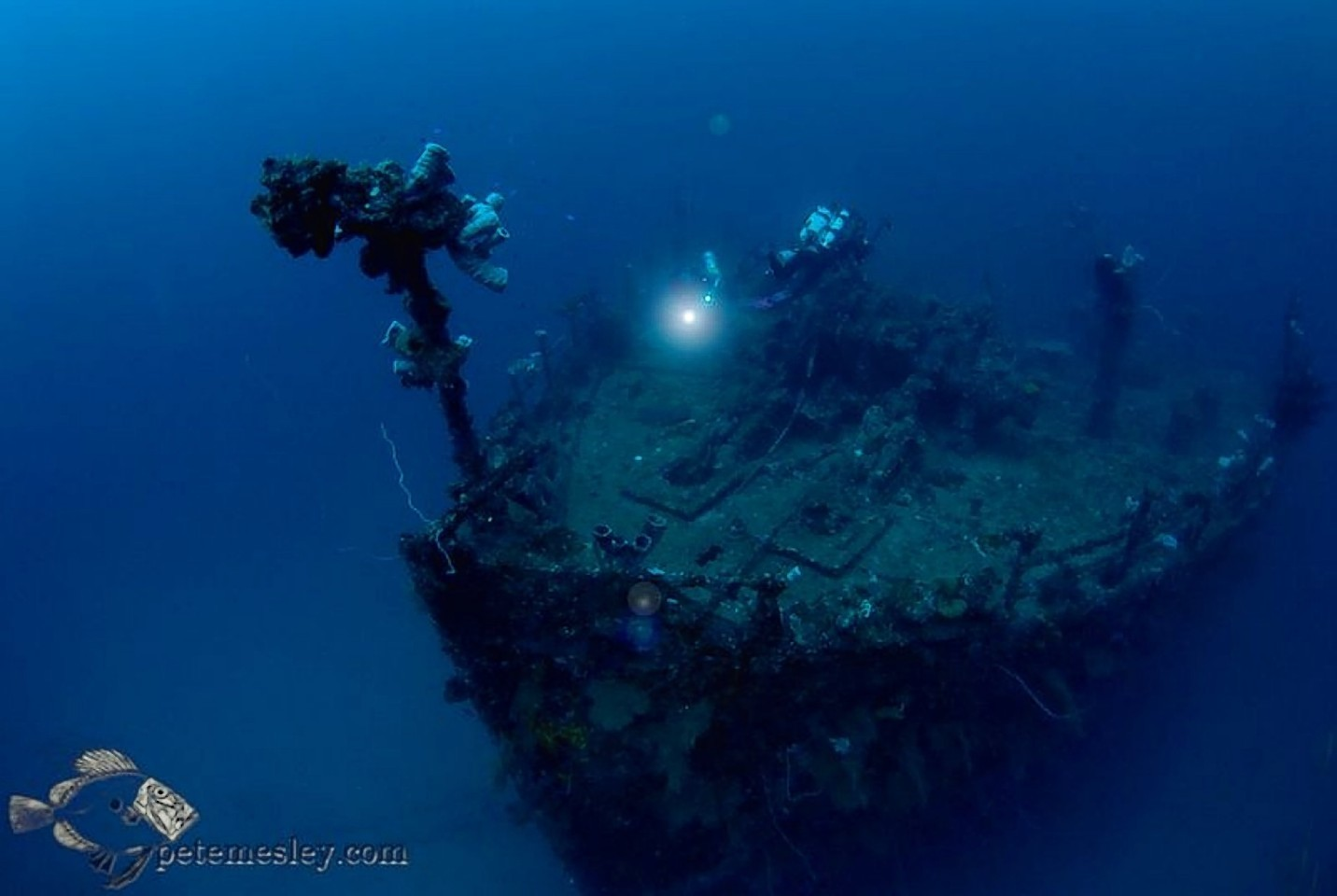The divers survey the Japanese shipwrecks