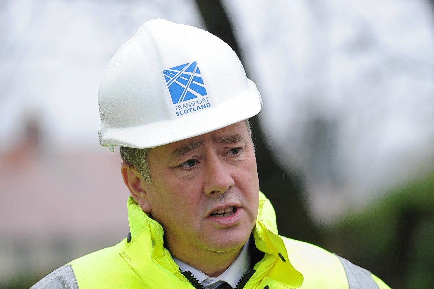 Infrastructure Secretary Keith Brown has promised to protect wildlife and their habitats along the route of a dualled A96.