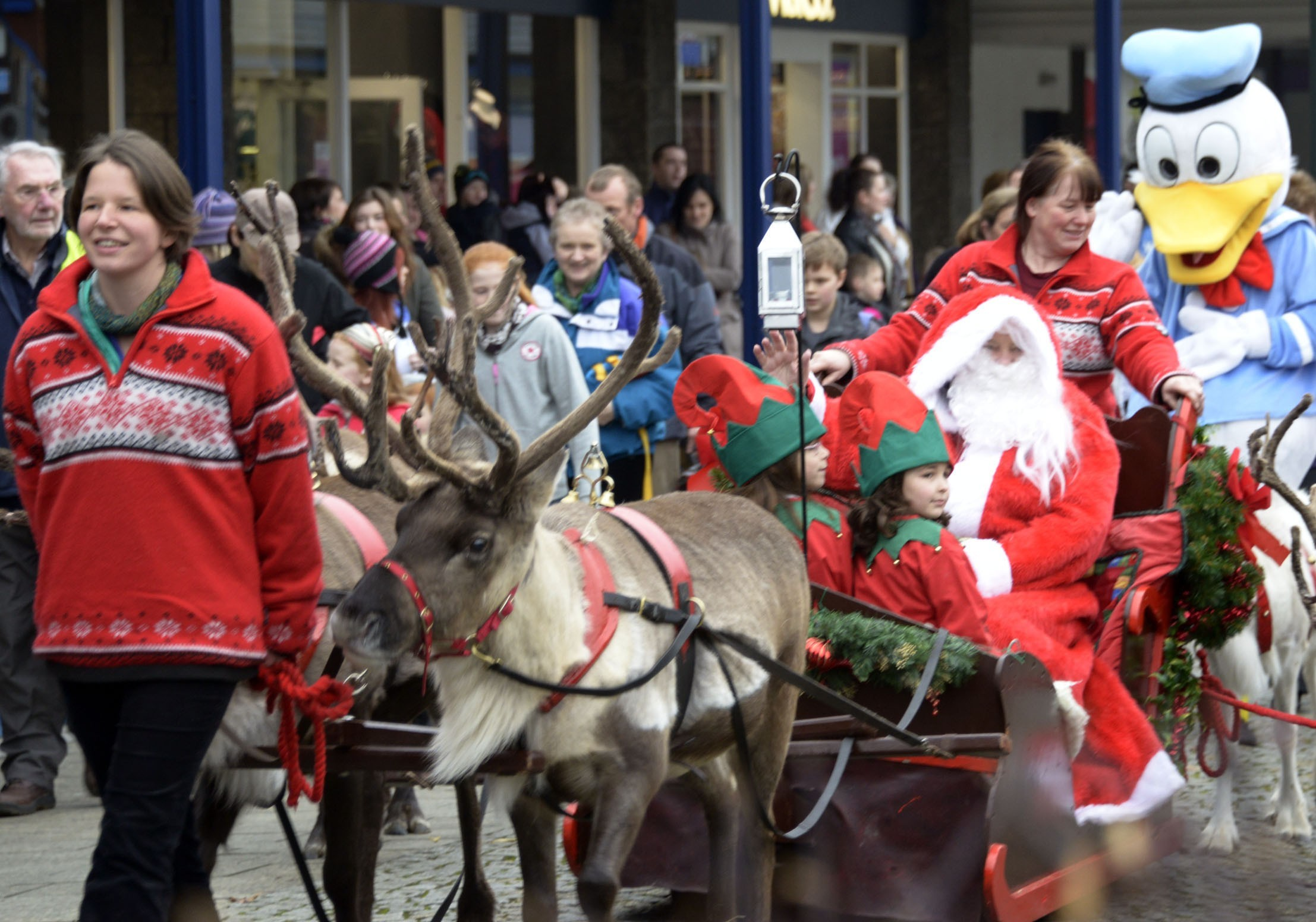 Santa and his reindeer arriving in Fort William for last year's Christmas Fair.