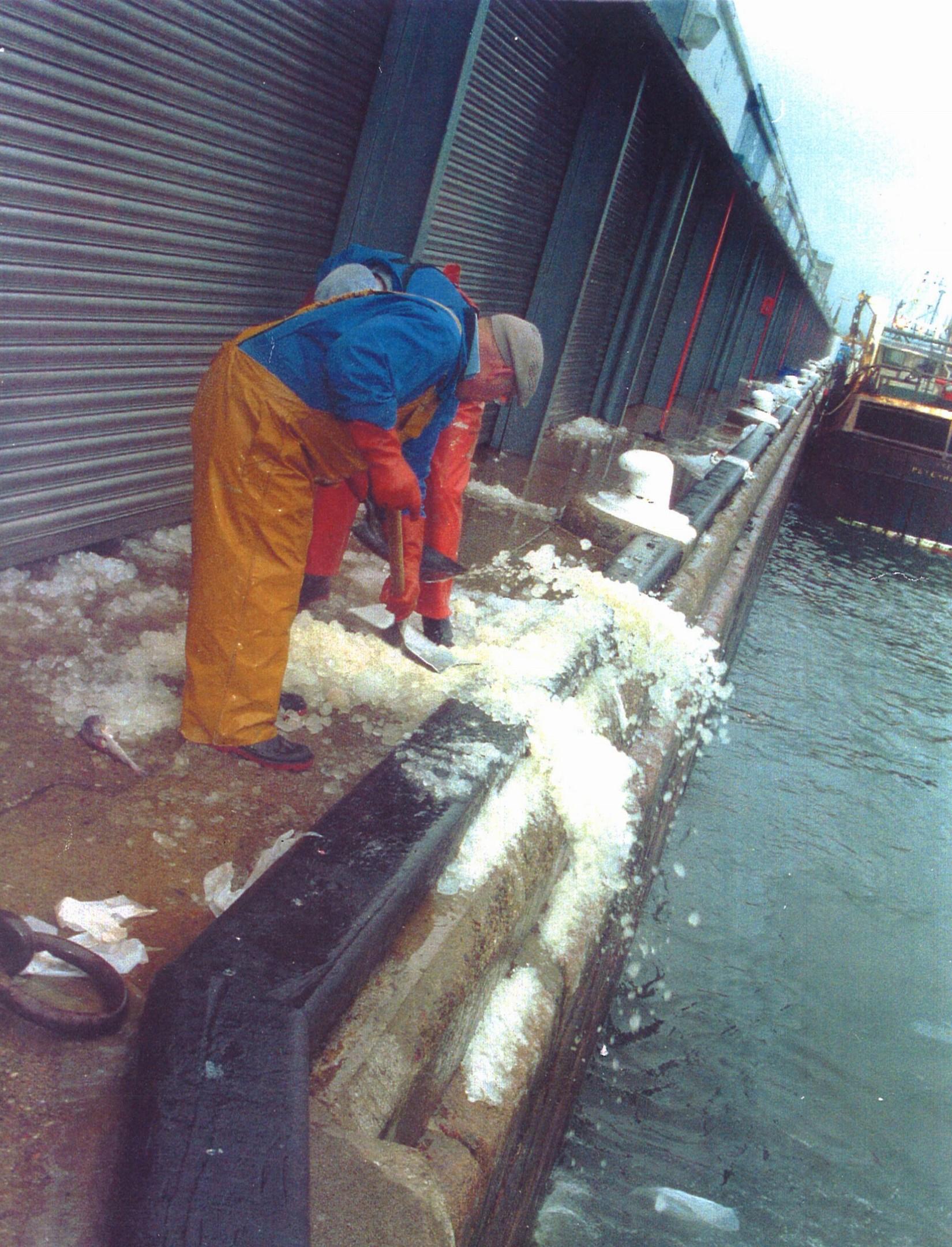 peterhead fishmarket 7