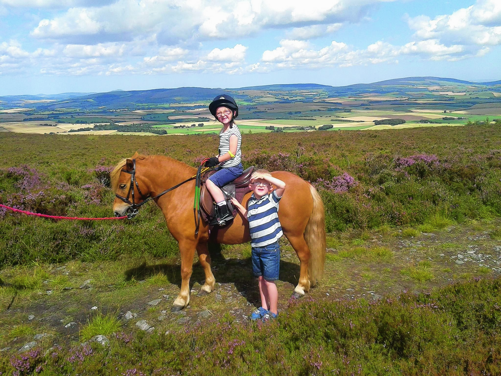 Here are Kayleigh and Archie with Mitch on a leisurely walk up the Suie Hill near Alford on a lovely summer's day. They are our winners this week.