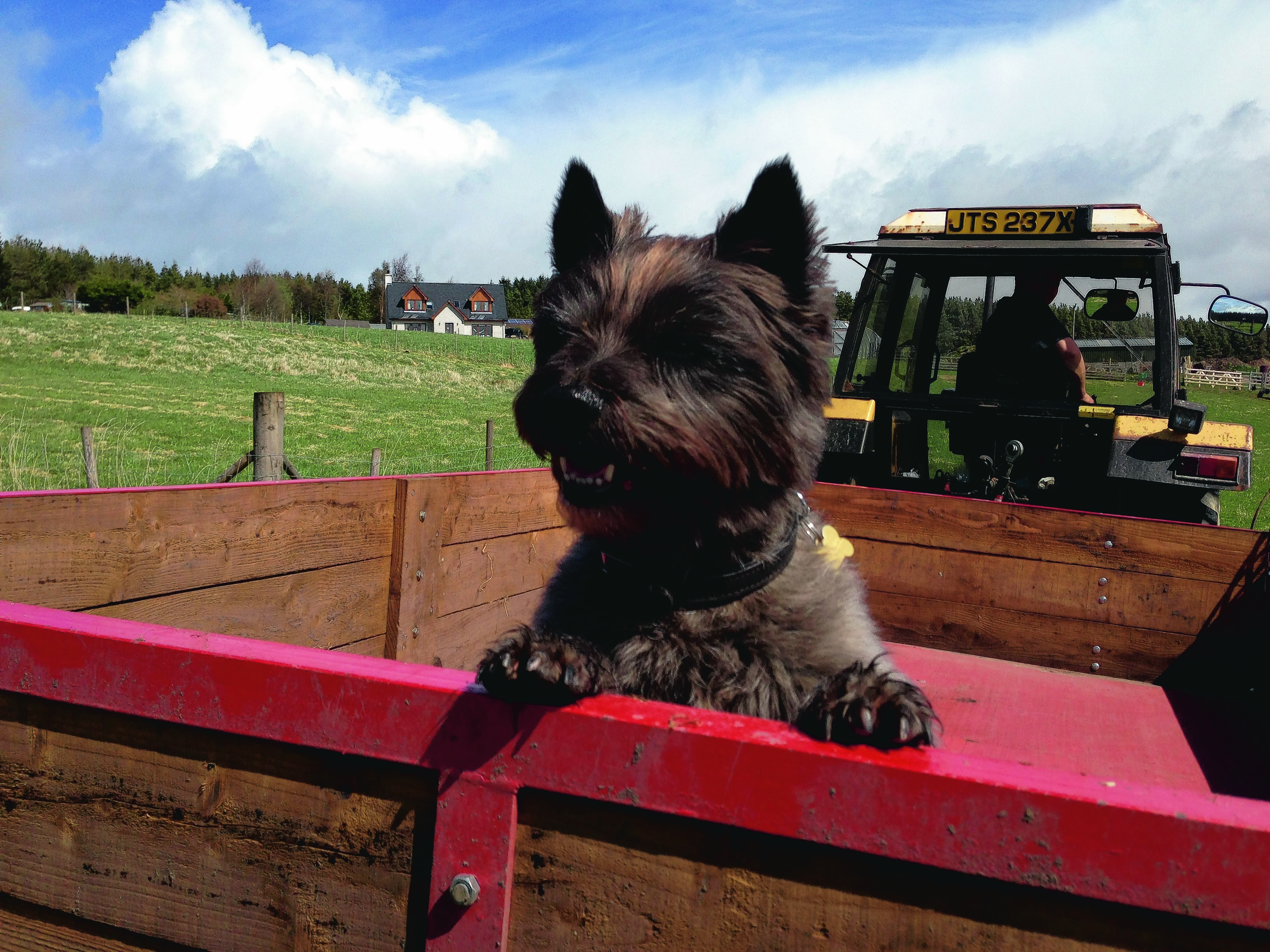 Eight-year-old Bracken     loves tractors. He stays with Wendy and Kevin Anderson in Farr, Inverness. He is our winner this week.