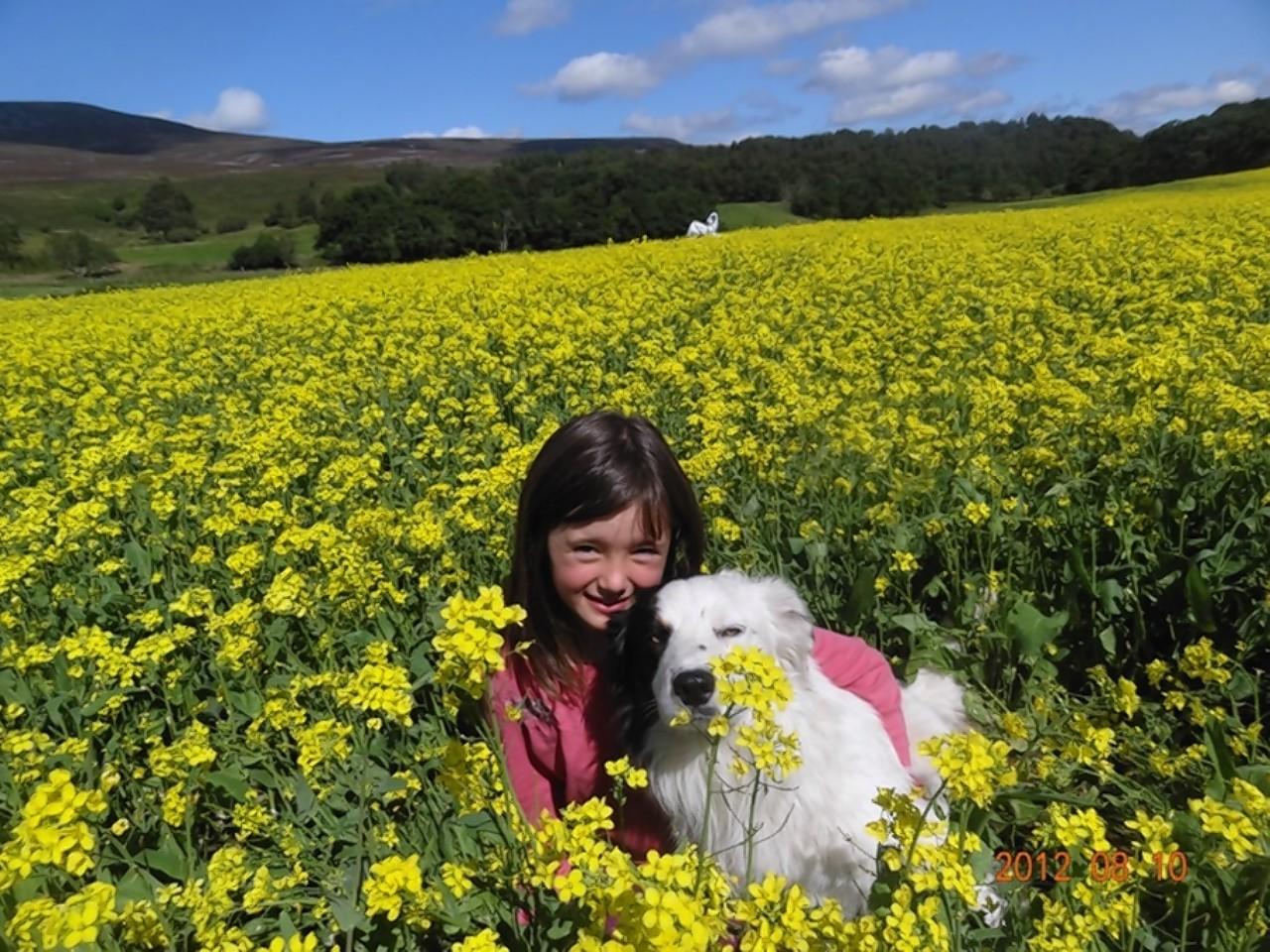 Adele Irvine with her beloved sheepdog Chubs