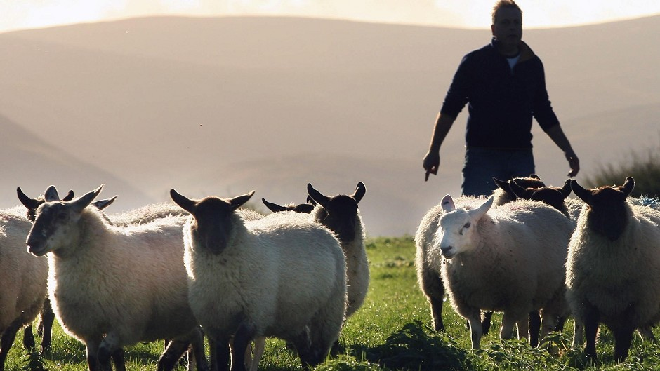 The scheme is designed to support sheep farmers in remote areas