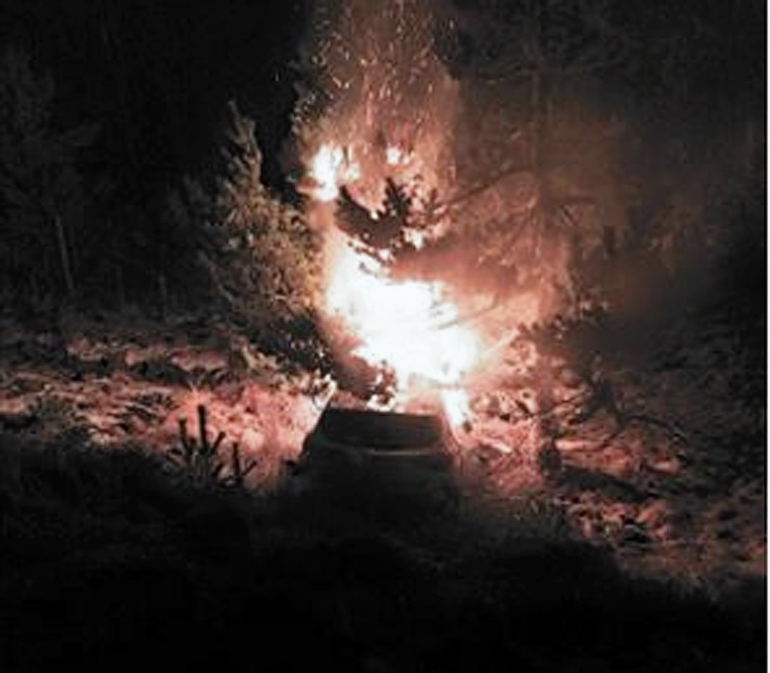 The crashed car on fire in the trees beside the A9 (Damien Mackenzie)
