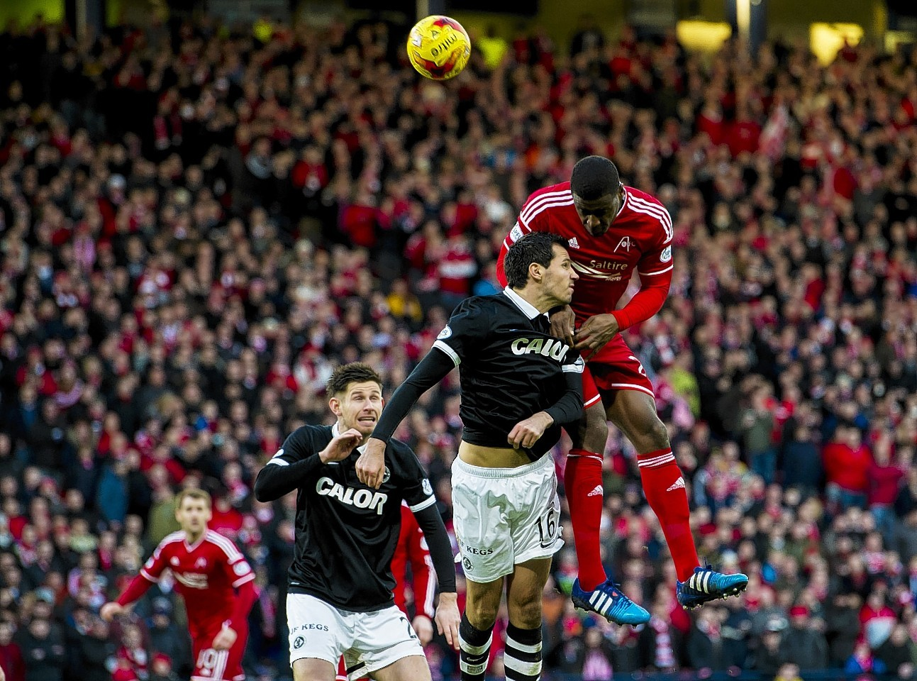 Don Daniels netted on his Aberdeen debut  in the League Cup semi final