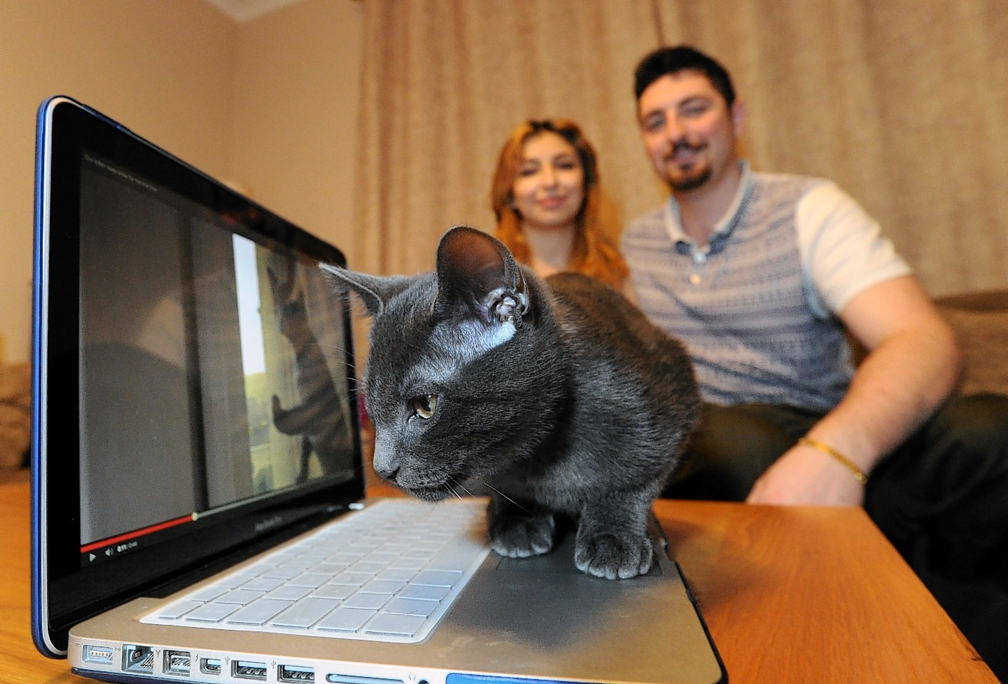 Zoofi has become an internet sensation since the video was uploaded onto YouTube