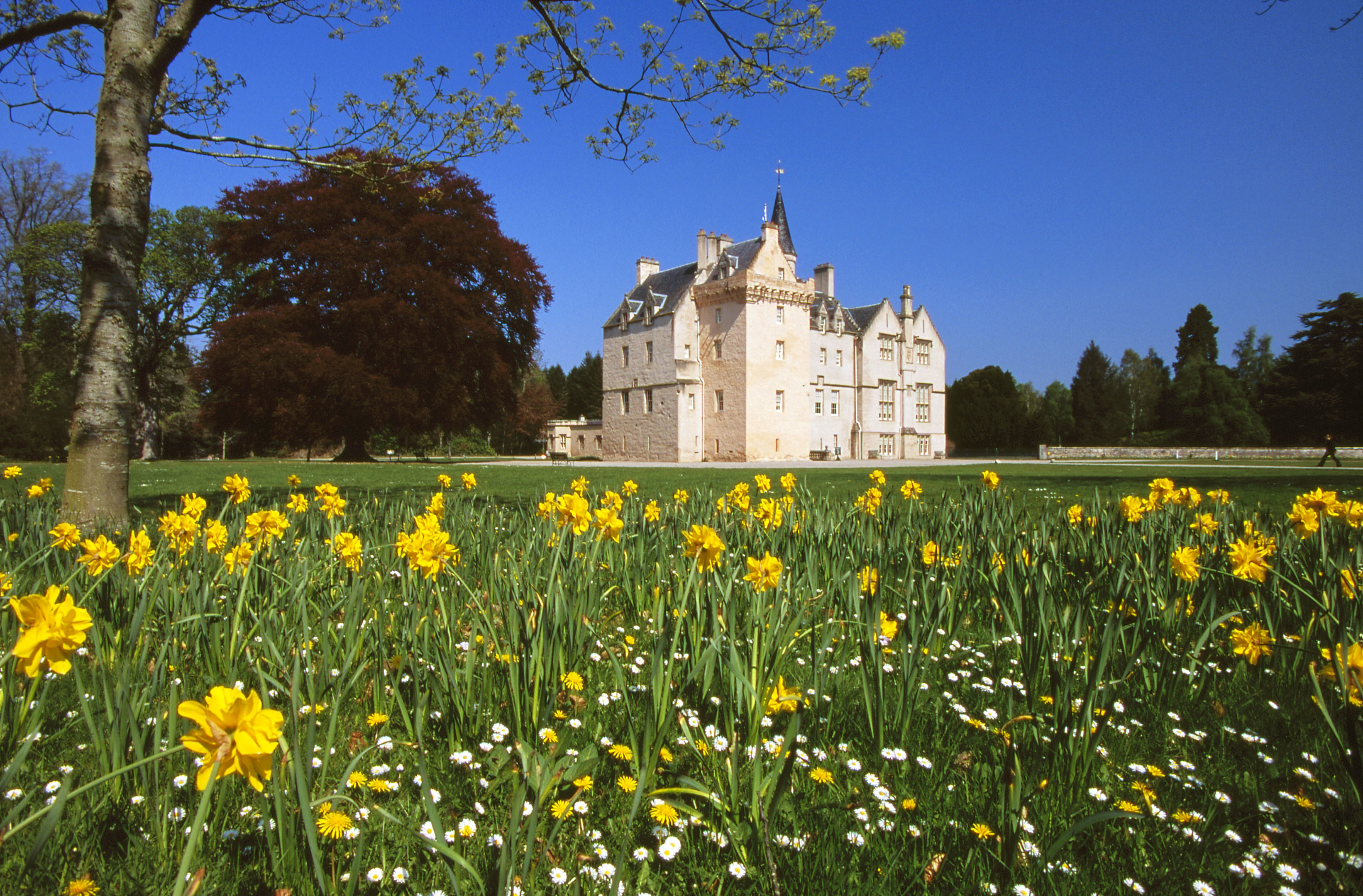 Brodie Castle is one of the places in line for additional investment