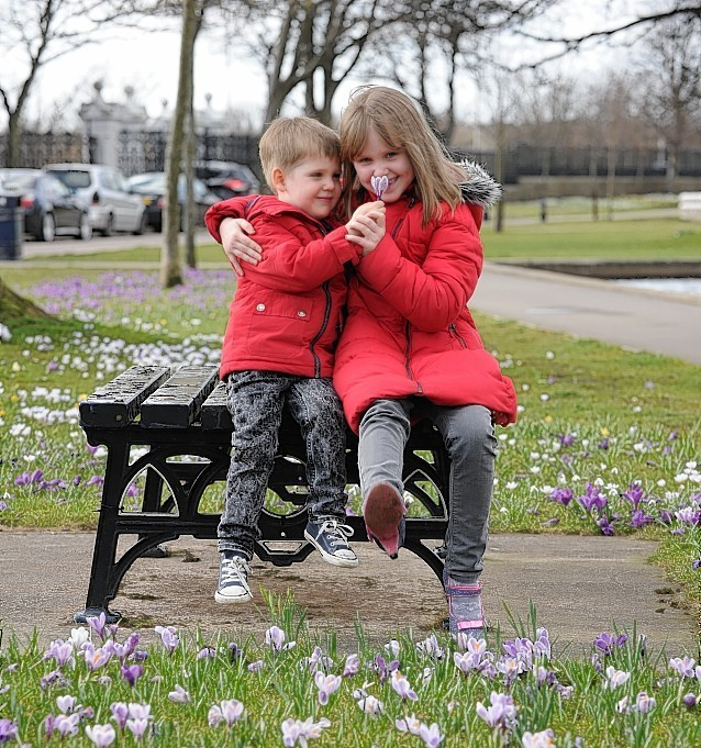 Duthie Park in spring