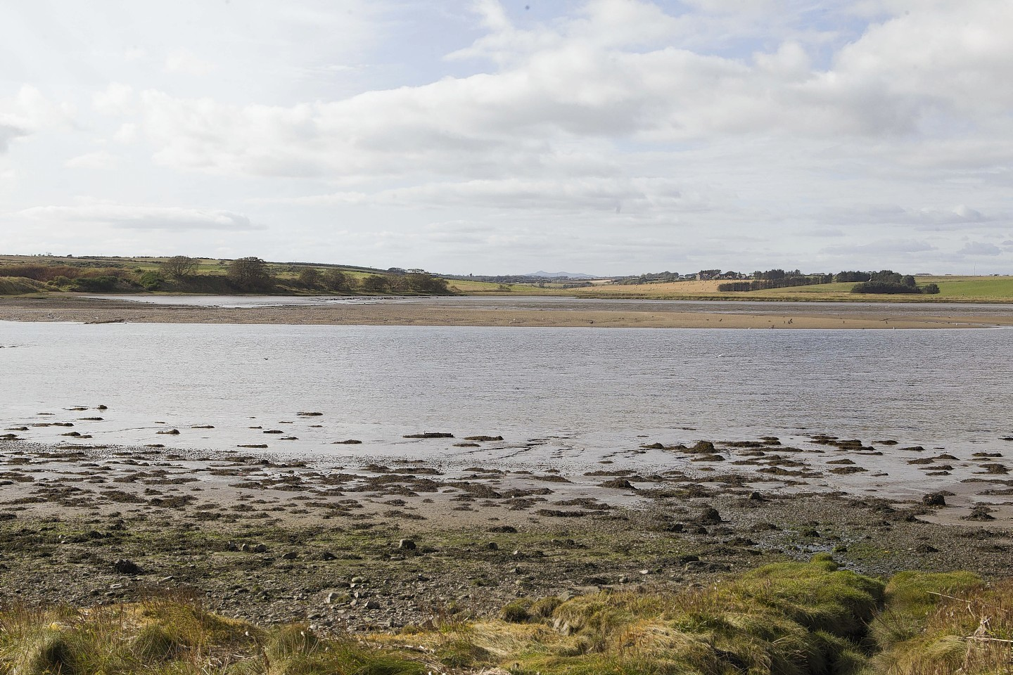 The Ythan Estuary, at Newburgh