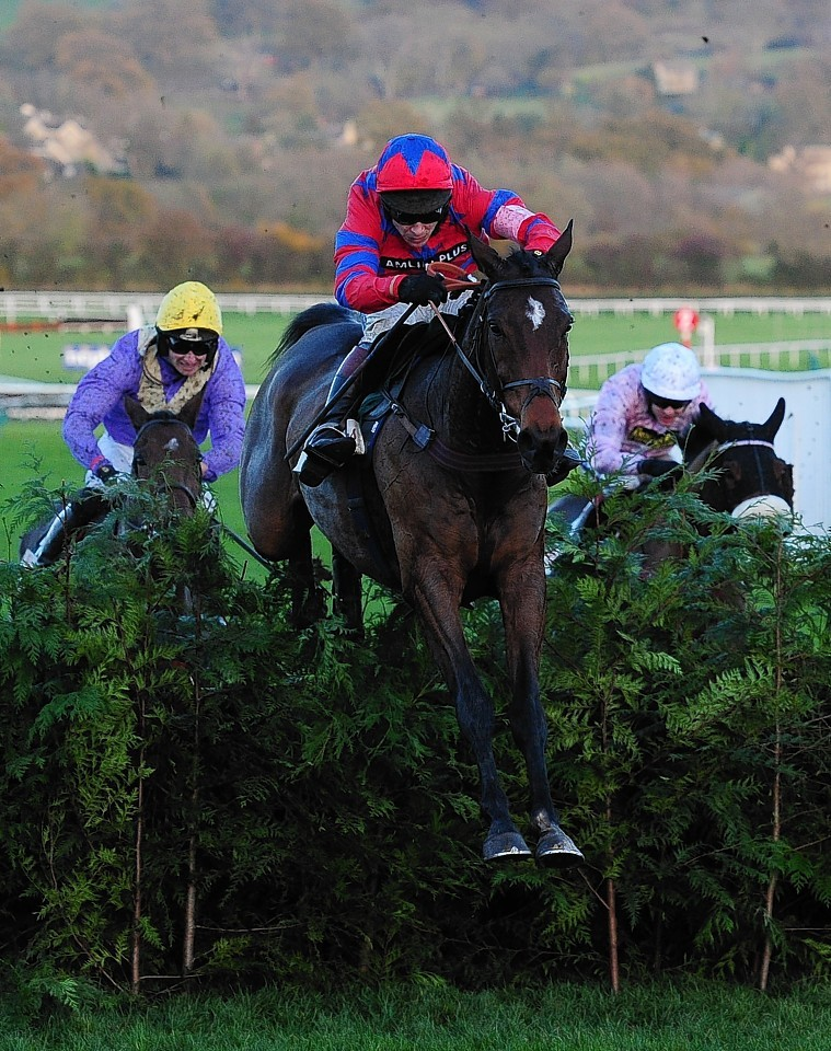 Balthazar King is well fancied ahead of Saturday's race