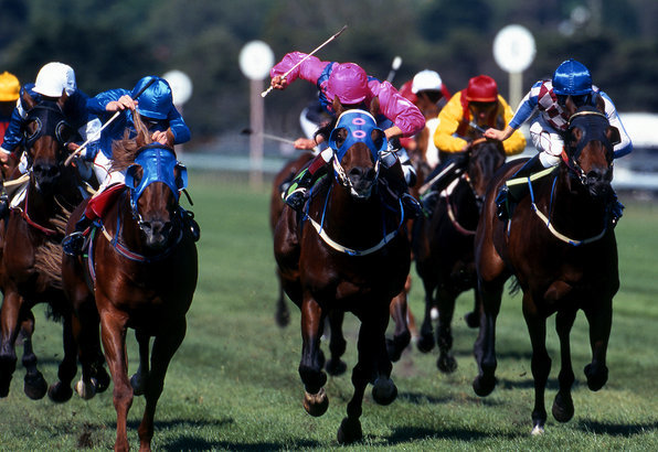 A large pack of race horses charging for the finish line