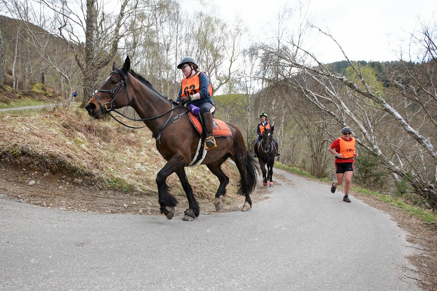 Man v Horse, rider Suzy Macfarlane ascends part of the course above Loch Ness. Picture by Paul Campbell