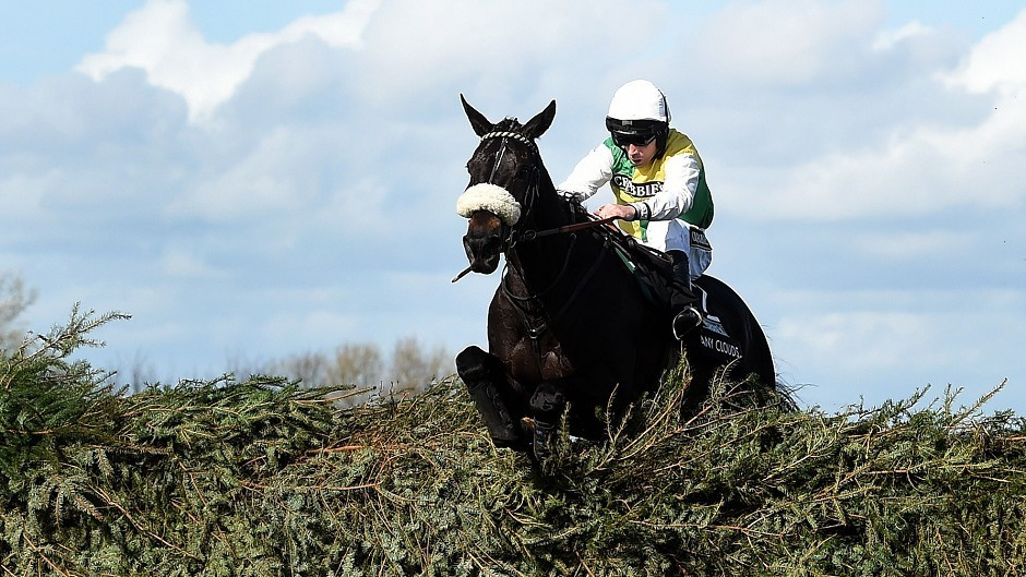 Many Clouds, ridden by Leighton Aspell, clears the final fence to win the Grand National at Aintree