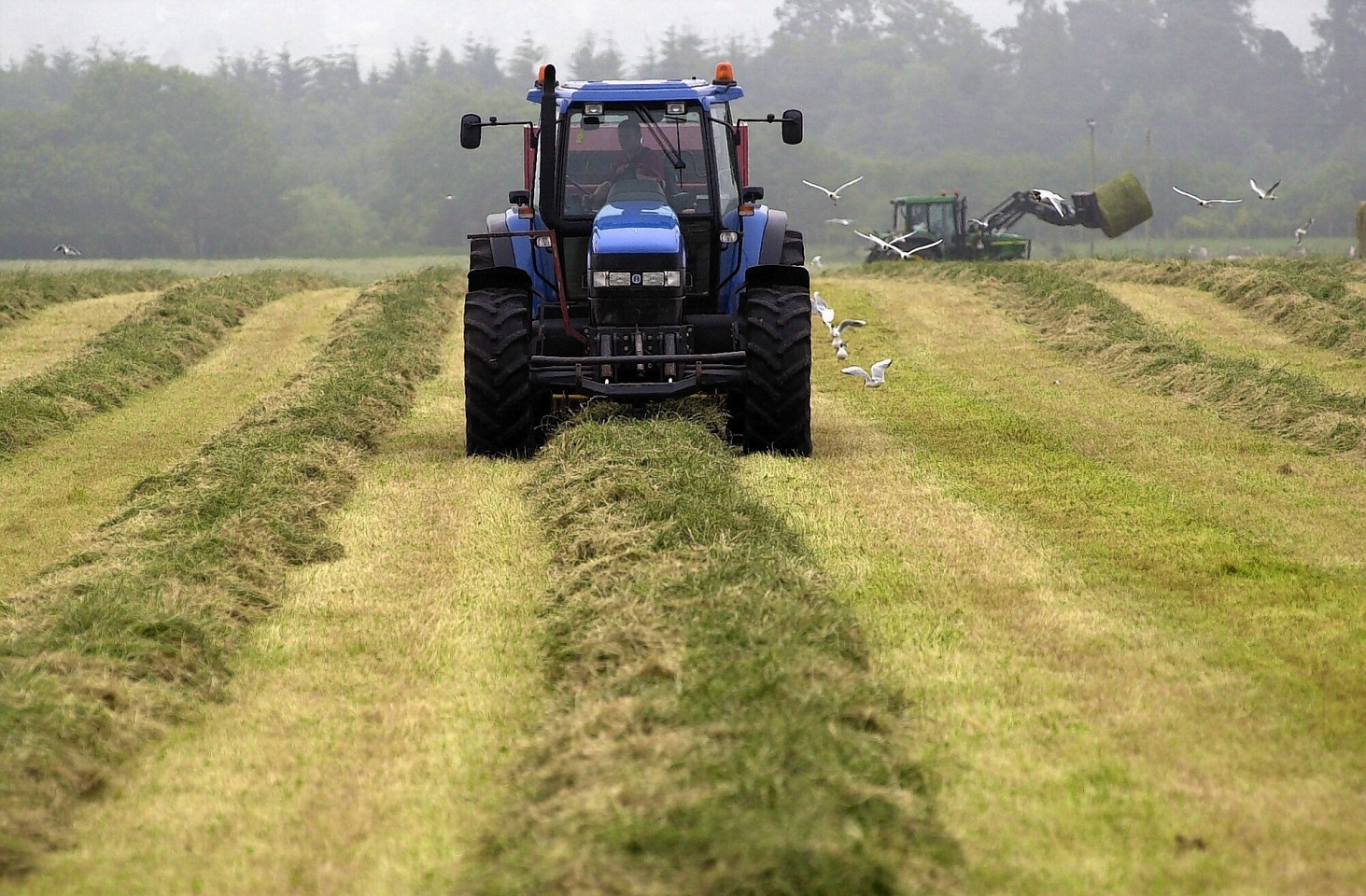 Problems with the IT system have resulted in payment delays to farmers and crofters.