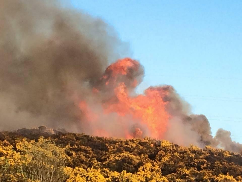 The blaze. Picture by Brian Caruana