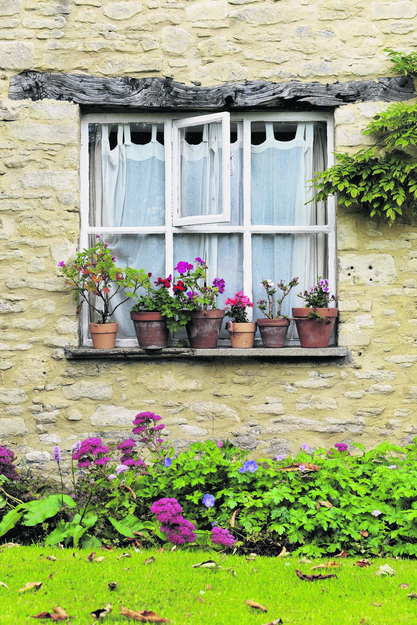 A Generic Photo of flowers outside a house. See PA Feature GARDENING Front. Picture credit should read: PA Photo/thinkstockphotos. WARNING: This picture must only be used to accompany PA Feature GARDENING Front.