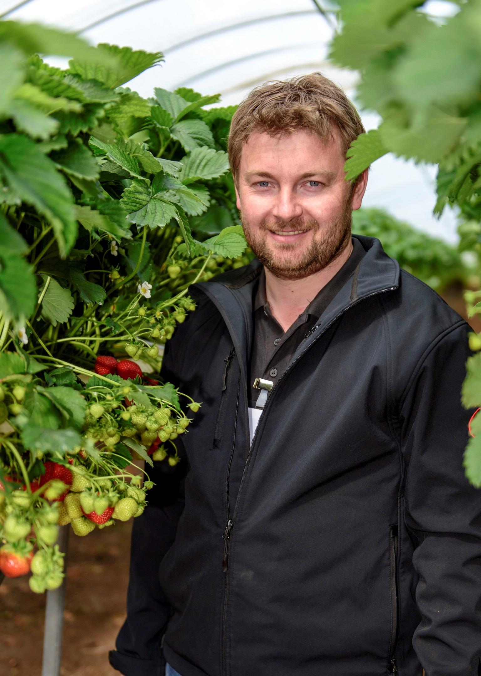 Castleton Fruit Farmer Ross Mitchell
