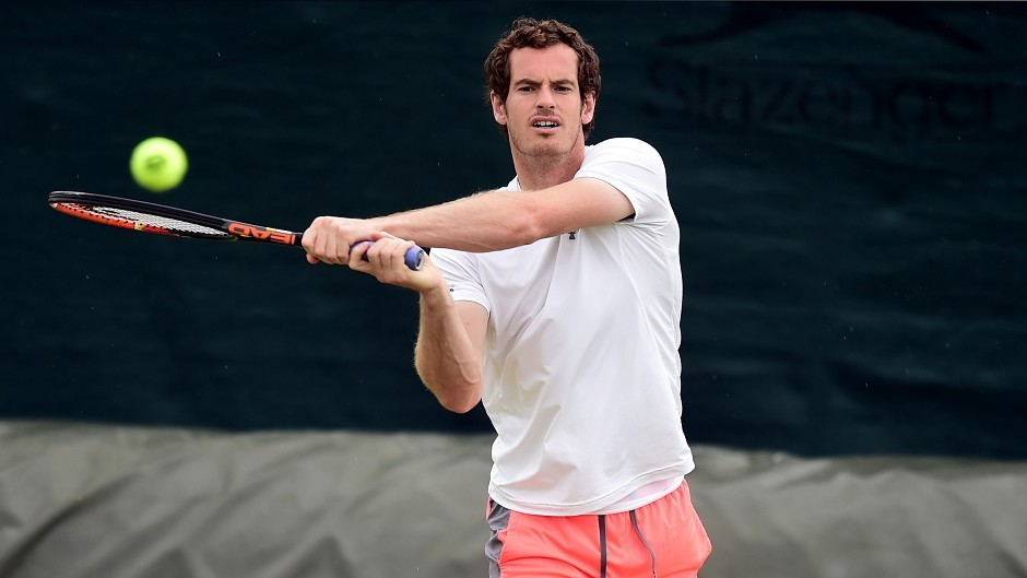 Fans are hoping to see Andy Murray win another Wimbledon title