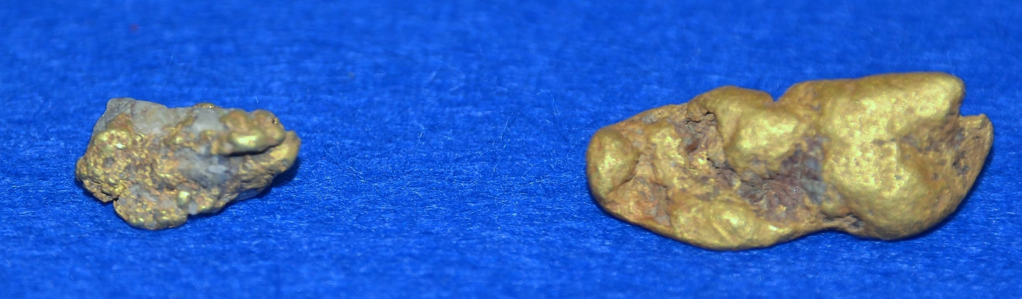 The 18.13 gsm gold nugget found in waters at Wanlockhead, Dumfries and Galloway