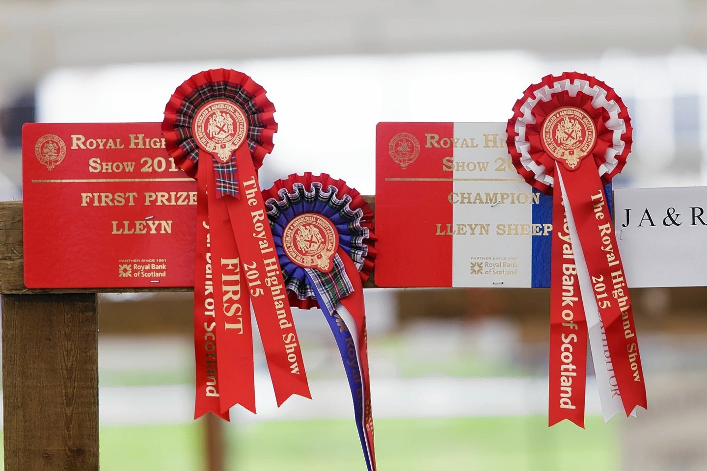 No rosettes will be awarded for poultry at this year's Royal Highland Show