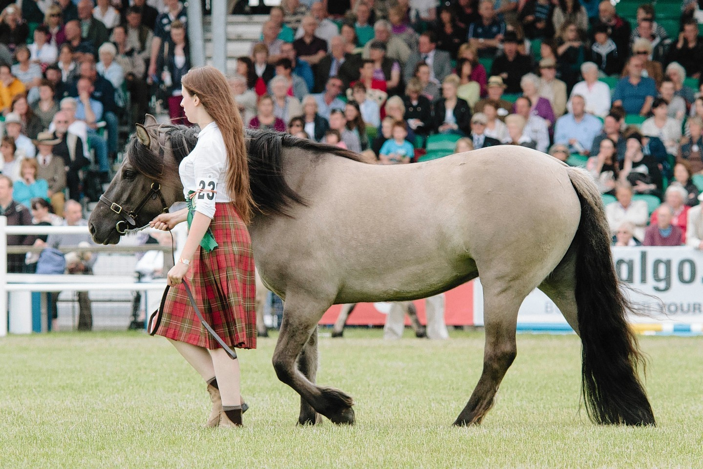 Looking back on the Royal Highland show