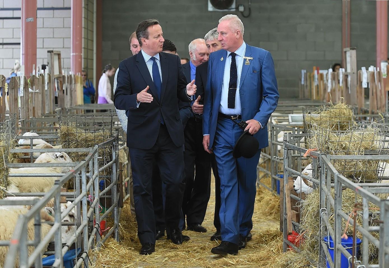 David Cameron at the Royal Welsh Show